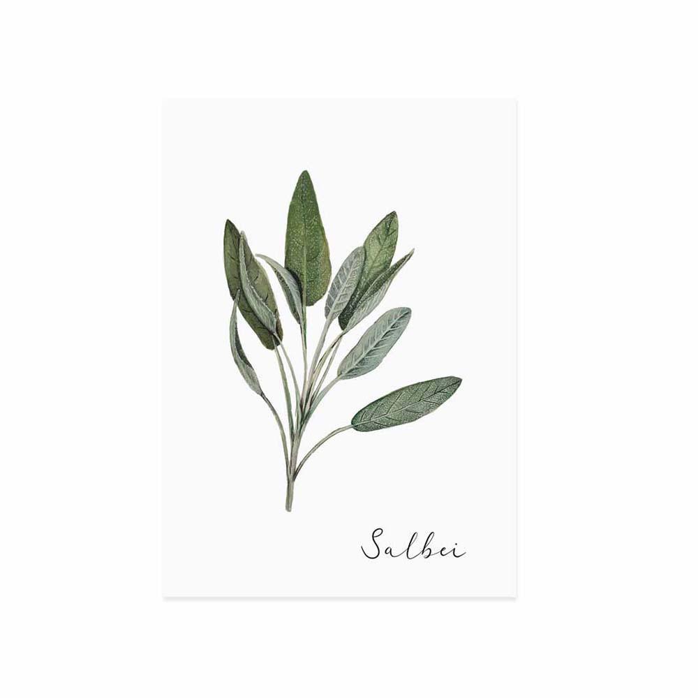 Kräuterkarte Salbei