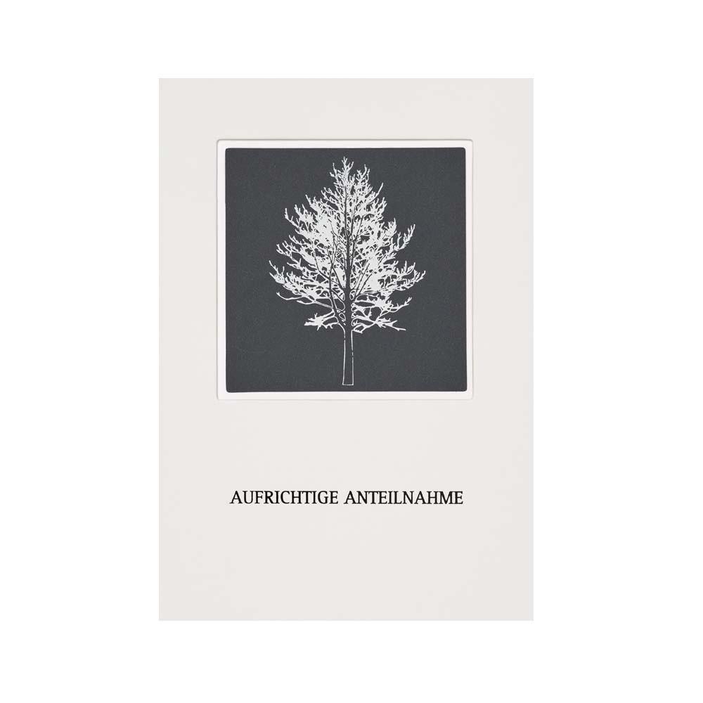 Räder Passepartout Trauerkarte Baum